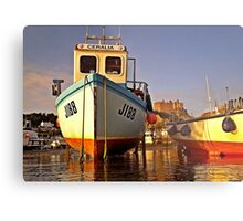 Gorey castle from kayak Metal Print