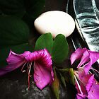 Still life with egg by zamix