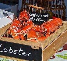 Freshly-Cooked Lobsters For Sale by Susie Peek