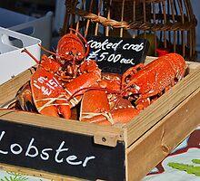 Freshly-Cooked Lobsters For Sale by Susie Peek