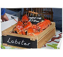 Freshly-Cooked Lobsters For Sale Poster