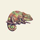 Hippy Chameleon  by Terry  Fan