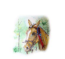 Prize winning horse by Kaykingston