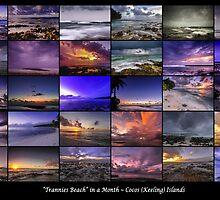 30 Days at Trannies Beach by Karen Willshaw