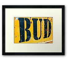 Bud  Framed Print
