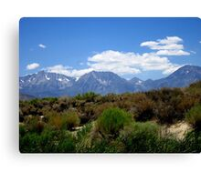 From Desert To Mountain Canvas Print
