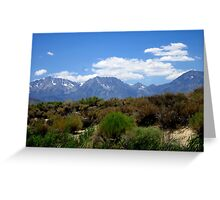 From Desert To Mountain Greeting Card
