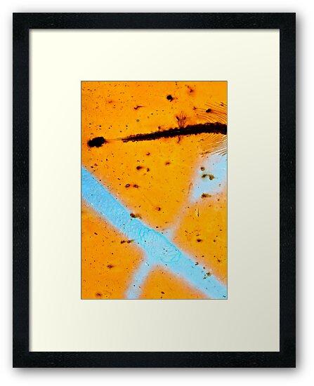 Feathered Pathway by Vikki-Rae Burns