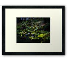 Enchanted Forest of Zen Framed Print