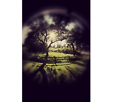 She dreamed of paradise Photographic Print