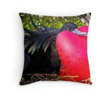 Frigate Bird, Galapagos Throw Pillow