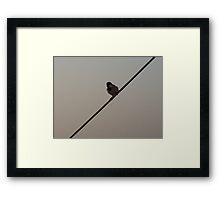 Lonely -11 Framed Print