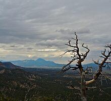 Gloom in Mesa Verde by EarthPhoenix