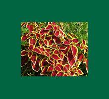 Blaze of Glory - Red Coleus in Autumn Unisex T-Shirt