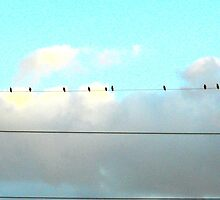 Birds on a Wire by CrystalFanning