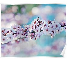 A String of Blossom Poster