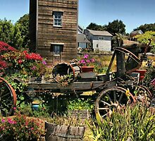 A Vintage Garden by Barbara  Brown