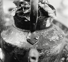 Tea Pot but No Tea by abocNathan
