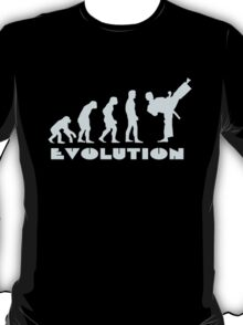 Evolution Of Martial Arts T-Shirt