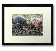 Keep digging there's money to be made in Truffles Framed Print