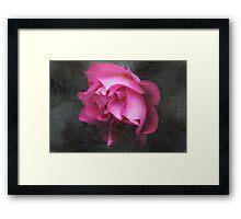 Grunge Blush Framed Print
