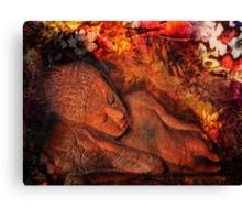 harmony in silence Canvas Print