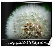 A white fluffy dandylion is the kind you will need. Greeting Card. Poster