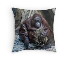 Mother and Baby - Erie, PA Throw Pillow