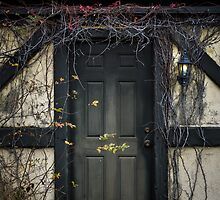 Vine Covered Doorway by jjtaylor