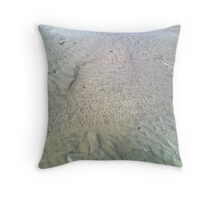 Shallow Pool Throw Pillow