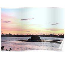 Lil mangrove island Poster