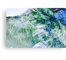 Tidal Reality Canvas Print