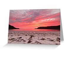 Sunset at Calgary Bay Greeting Card