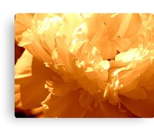 Secretly  Beautiful Canvas Print