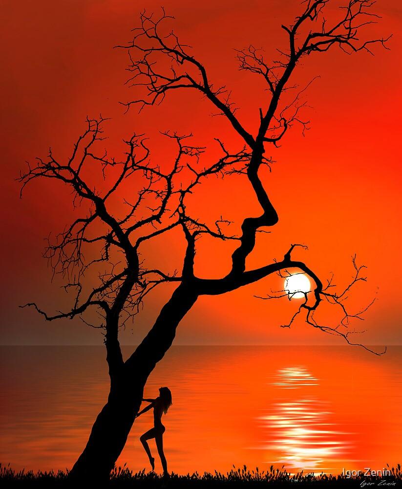 Sunset Silhouettes by Igor Zenin