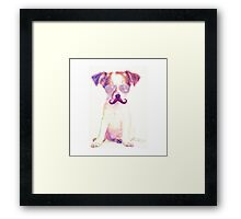 Funny Chihuahua purple Mustache and glasses  Framed Print