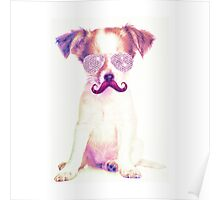 Funny Chihuahua purple Mustache and glasses  Poster