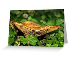 Fungi #1 Greeting Card