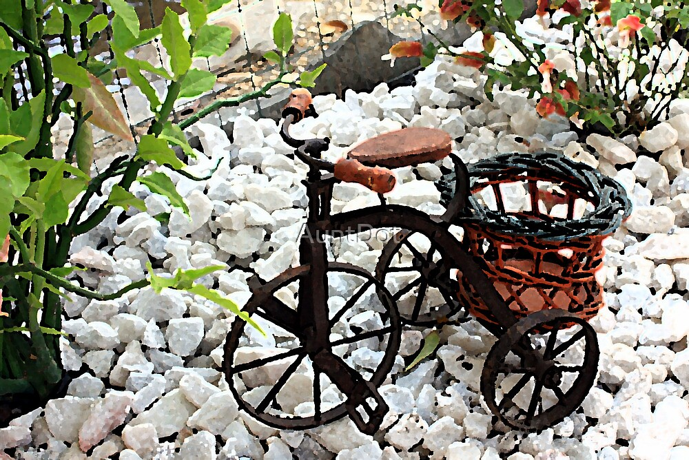 Tricycle Garden Planter by AuntDot