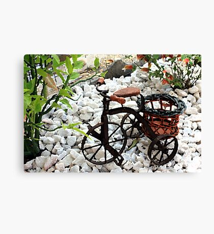 Tricycle Garden Planter Canvas Print