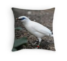 Bali Starling Throw Pillow