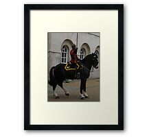 Beautiful Pair Framed Print
