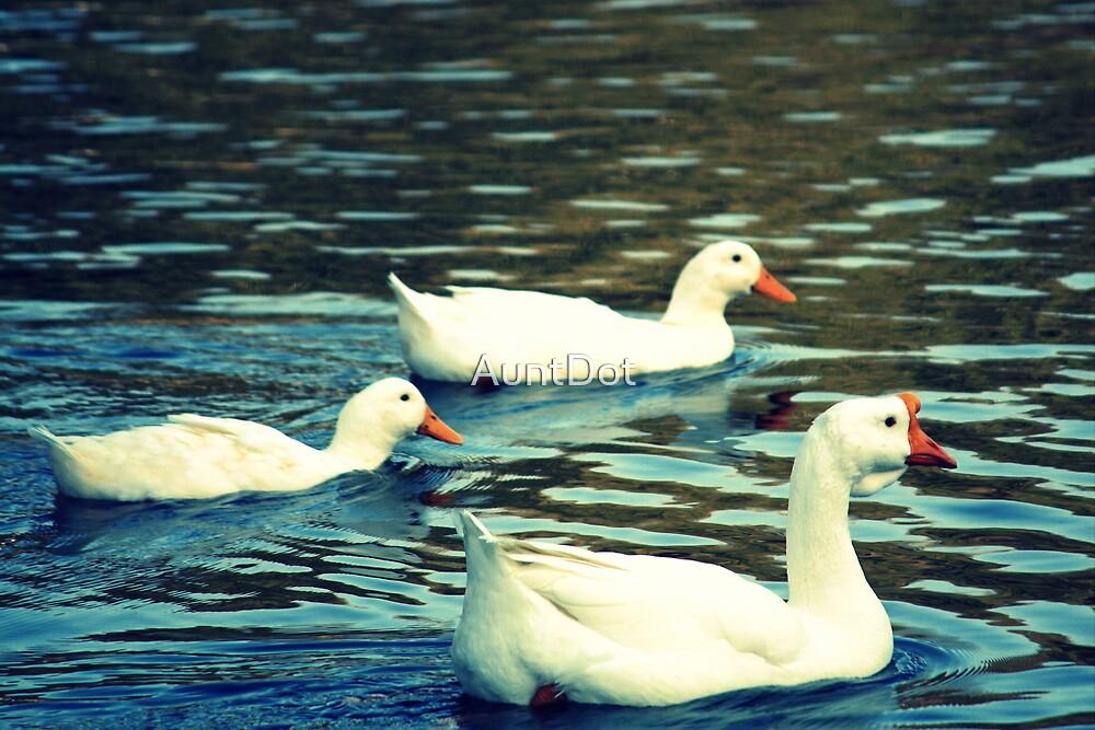 Duck, Duck, Goose by AuntDot