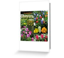 Keukenhof Collage featuring Anemones and Hyacinths Greeting Card
