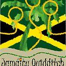 Jamaica Quidditch by Isaac Novak