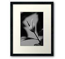 My space! 4430 Framed Print
