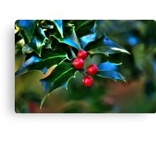 Holly Fantasy Canvas Print