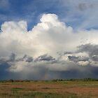 Stormy weather by zumi