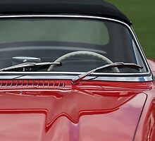 1958 Mercedes Benz 300SL Roadster by Jill Reger