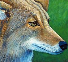 Coyote Logic by Brian Commerford